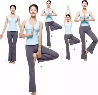 """瑜伽""""树式""""图片"""