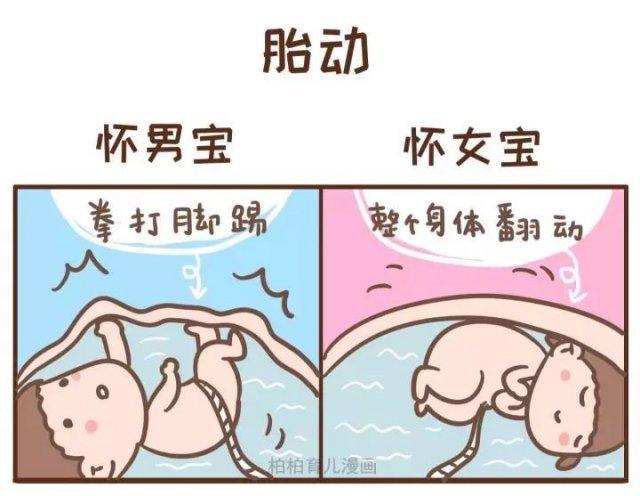 胎动感觉拳打脚踢怀男孩,整个身体翻动怀女孩.