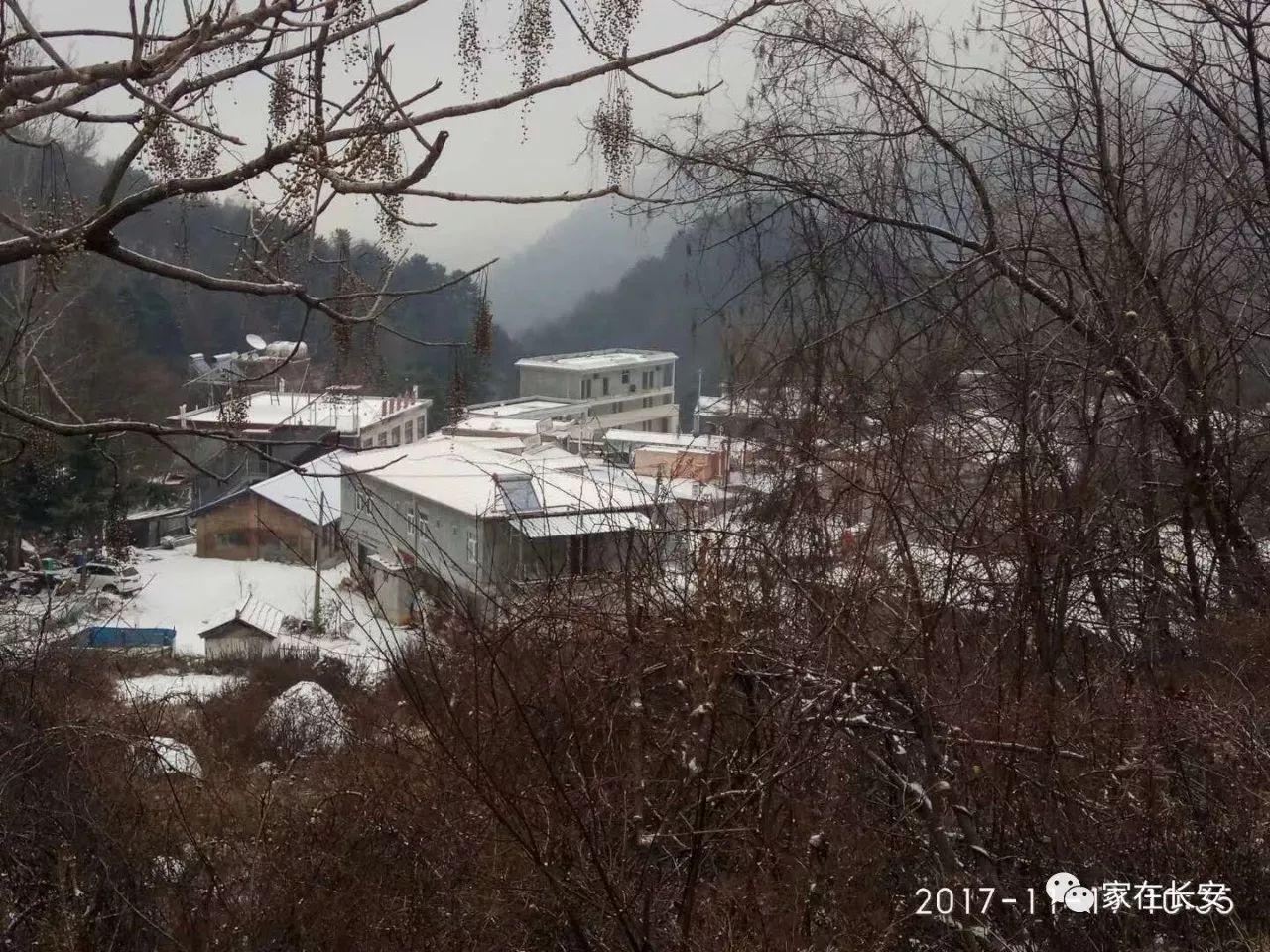"""那么没美""""-秦岭210确实下雪,今日真实雪景,又被 秦岭雪景 蹭热度"""