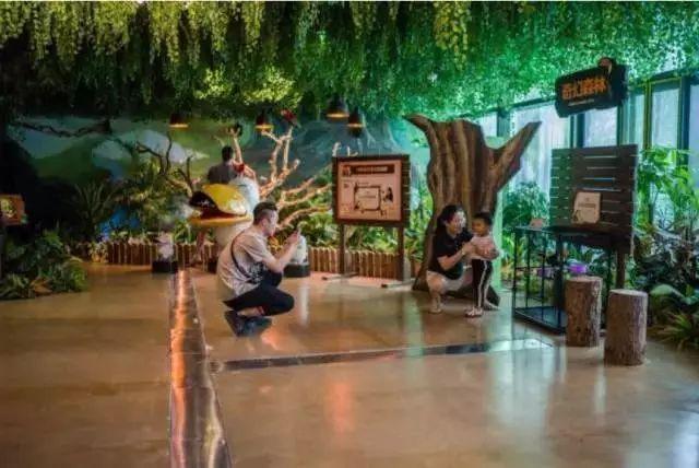上文提到的韩国室内动物主题公园(zoolung zoolung)开到武汉天地壹方