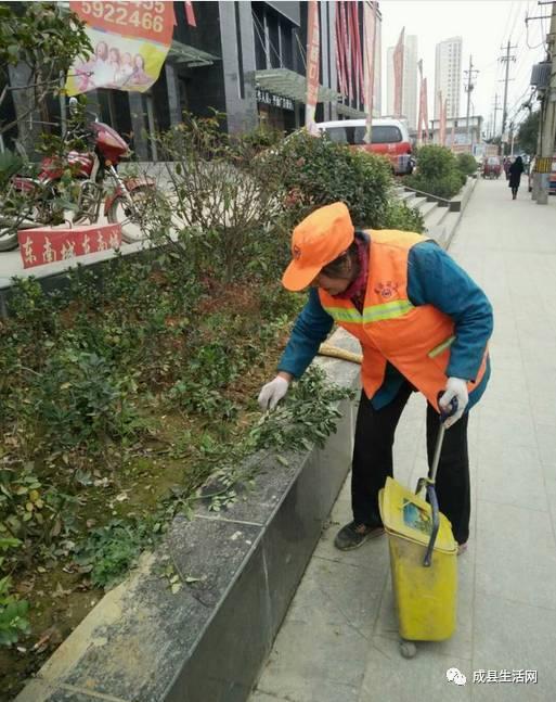 成县的人口数_成县鸡峰山