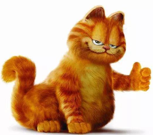 橘猫锁喉情侣头像