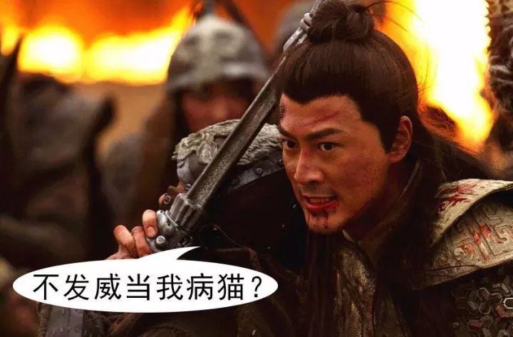(图)电视剧《忠烈杨家将》剧照