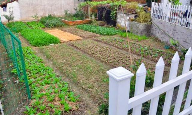 晒晒武汉小舅500万建450平农村别墅,有花园菜地,大家图片