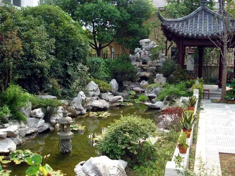 看苏式园林庭院中植物与山石的微妙关系!图片