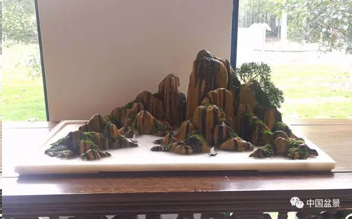 山水组合盆景映照 山水盆景名城 美如画图片