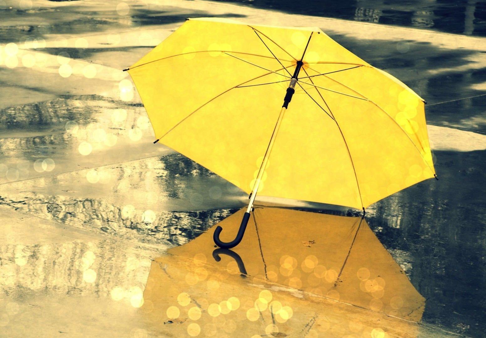 雨伞卡通图片