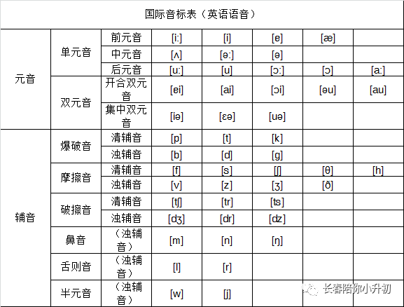 小学英语48个音标发音(附详细图解和视频)+音节分类汇总,太牛了!