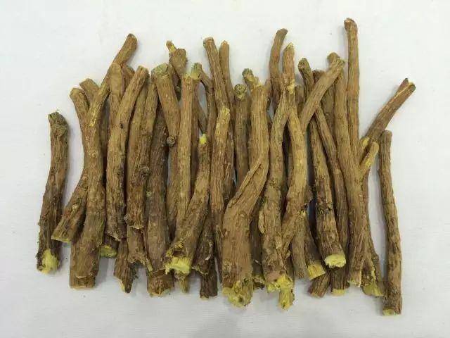 【中医药专栏】向阳而生的黄芩