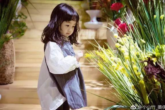 好剧推荐丨沈阳姑娘小山竹一点都不简单,小小年纪居然