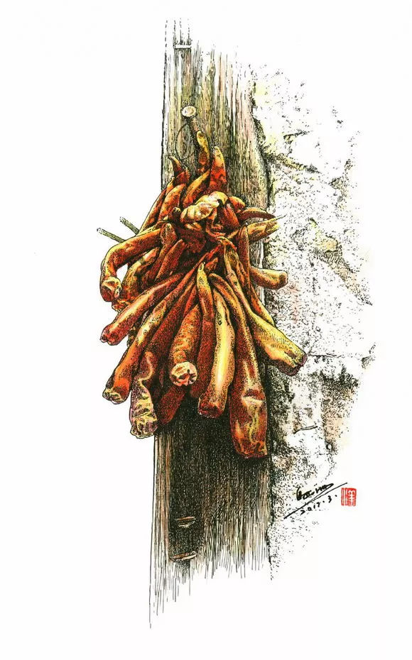 彩铅手绘图片辣椒