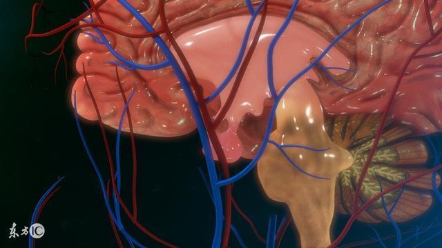 得了脑垂体微腺瘤,该怎么治疗才好
