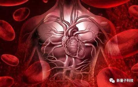 人体中的微动脉,毛细血管,微静脉之间的血液循环,就叫做微循环.图片