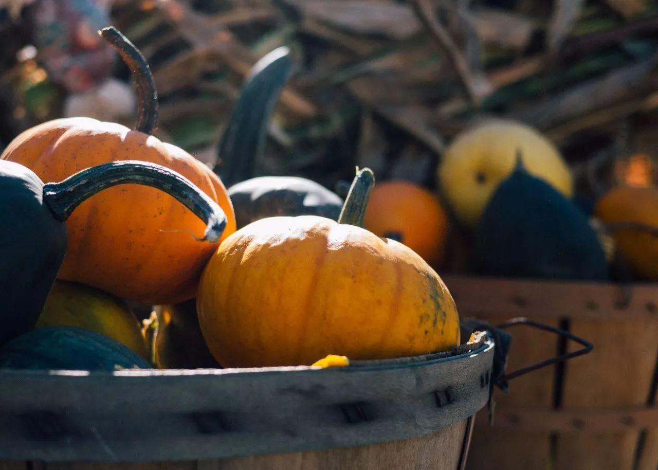 什么是当季水果 什么是当季蔬菜