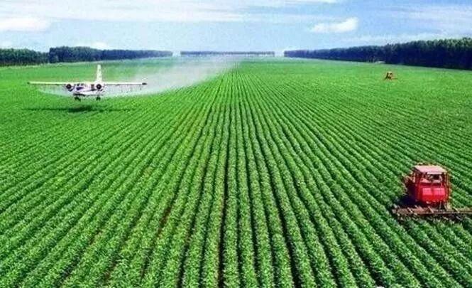"""""""农业""""的图片搜索结果"""