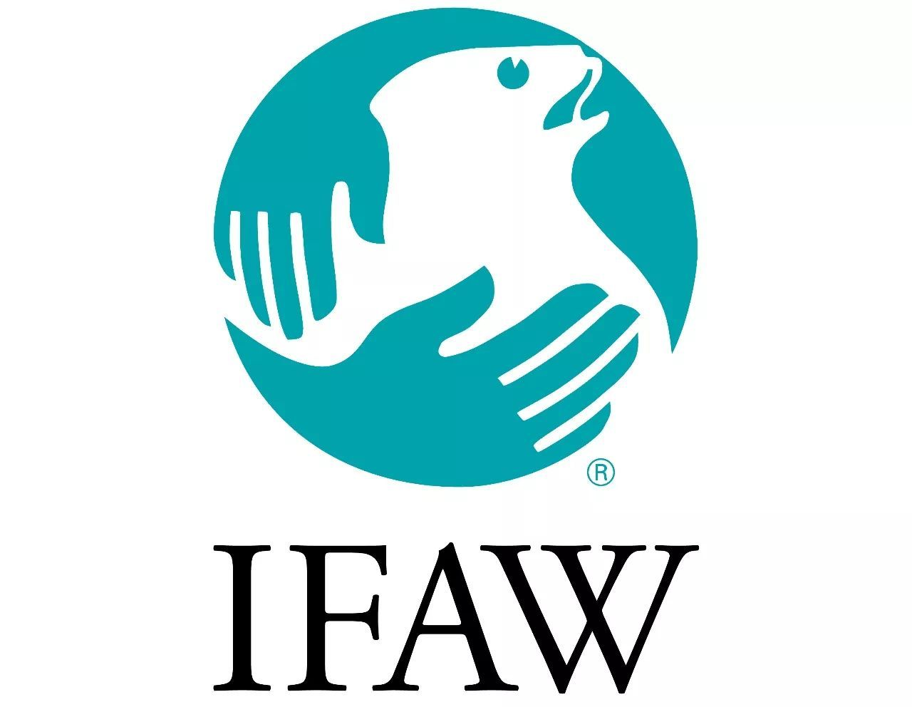 国际爱护动物基金会+