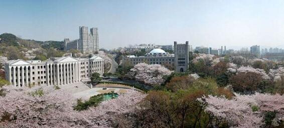 留学为什么要选择韩国? - 华旅留学亚欧团队 - 世纪华旅留学亚欧申请团队