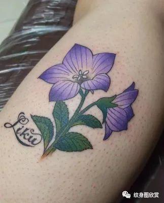 植物纹身 - 桔梗花纹身图片