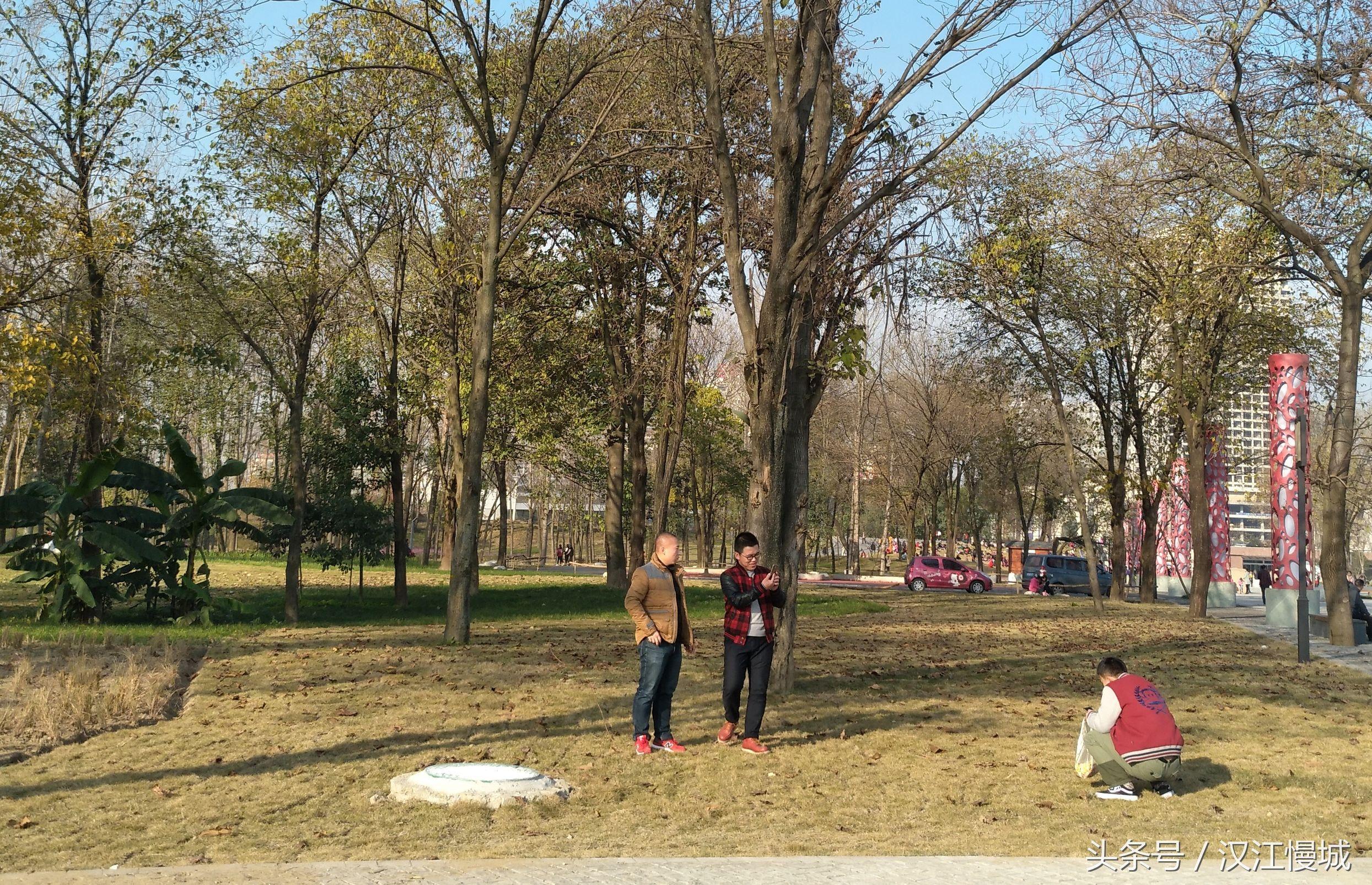 汉中迎来25度暖冬_公园草坪变日光浴场