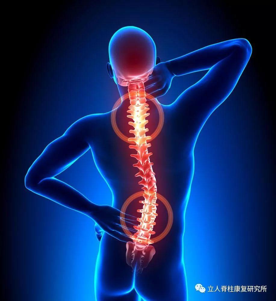 腰突的原理_白领司机腰突真的可以治愈么