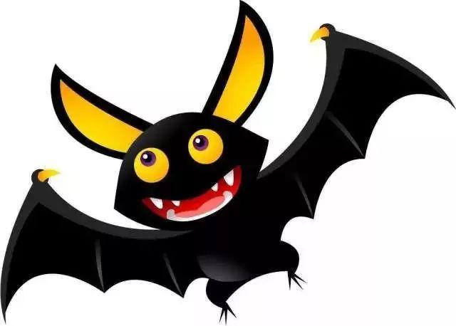 家里来了一只黑蝙蝠,有人说不能打死,可我刚刚才打死了,怎么办?图片