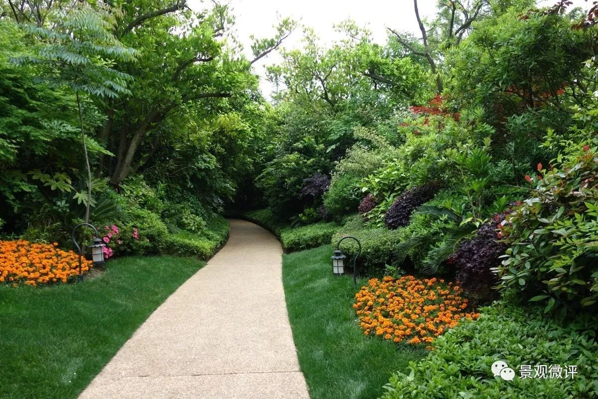 深度解析 | 园林景观植物配置