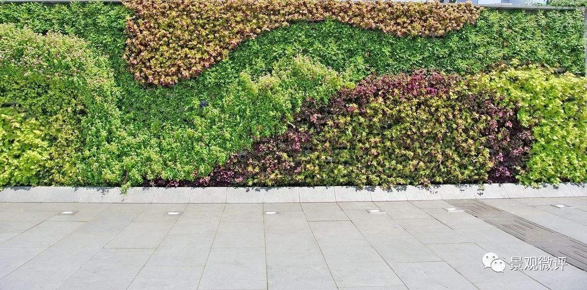 花墙 景观 墙 植物 1200_594