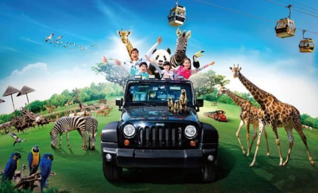 【特】长隆野生动物园20周年庆促销月 仅售199元/人一天跟团游