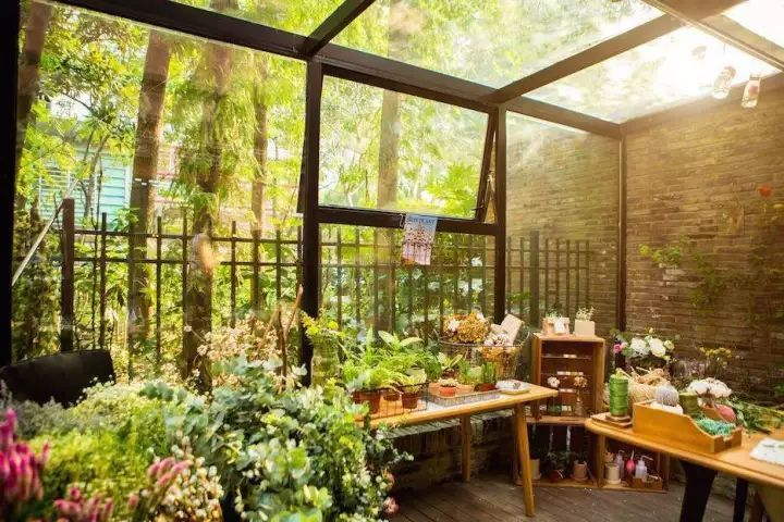 玻璃花房里,安守春光灿烂的日子