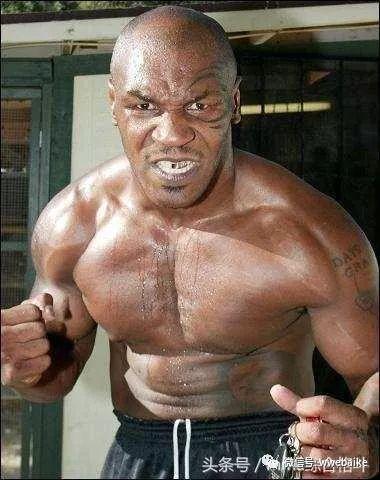 """他被称为""""拳击界的施瓦辛格""""却被拳王泰森"""