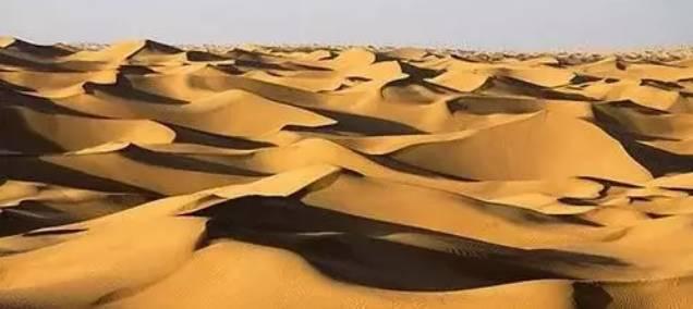 中国科学家发大招:沙漠即将全部变成良田! - 张庆瑞65 - 百纳袈裟