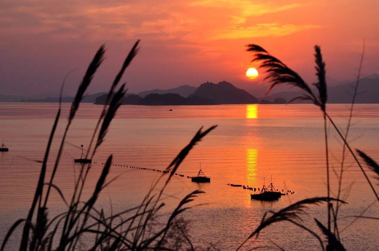 游艇,探索千岛湖的星罗棋布,发现美好未知的港湾,还得靠它图片