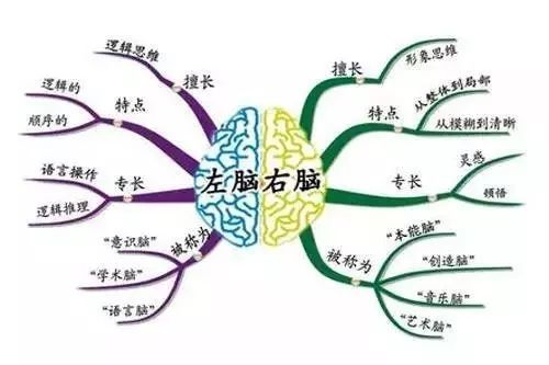 思维导图怎么画简单?简单的思维导图绘制方法图片