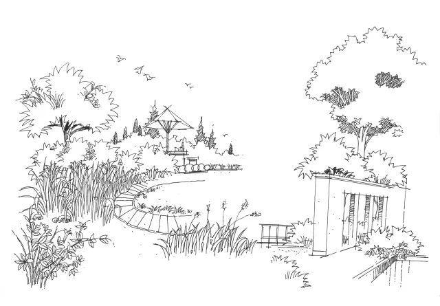 【跟我学手绘 】景观植物篇