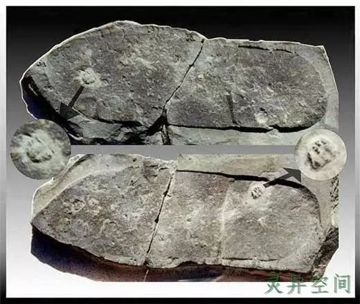 香港地下六合彩世界未解之谜全记录(一)史前超级文明之谜
