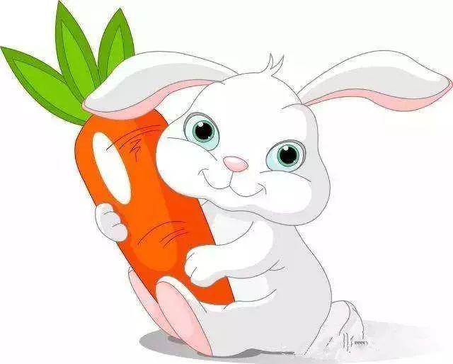 兔子有长长的耳朵.