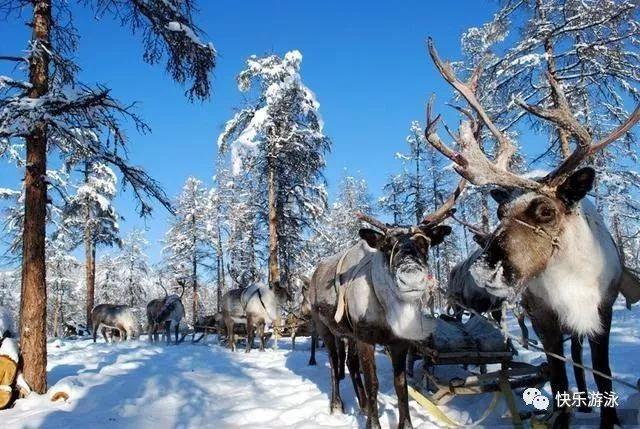 【世界见闻】世界最寒冷及最长寿的村庄!