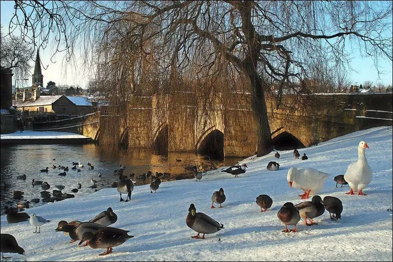 这周英国继续下雪,这些小镇还不美上天啊~