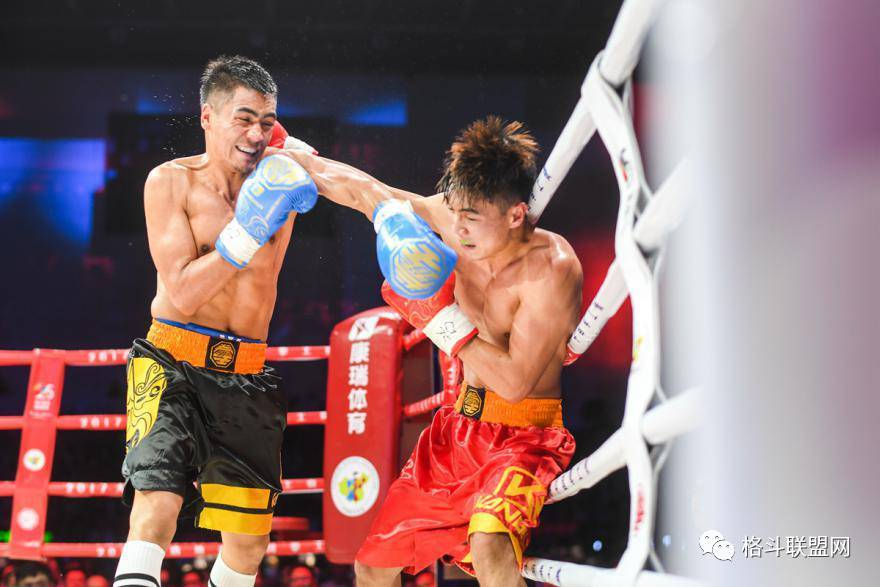 2017大唐地产中国拳王赛厦门站何君君强势晋级,1月将与吕斌争夺