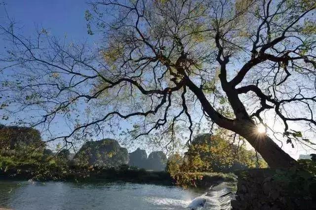 别去云南!广州附近就有媲美香格里拉的地方!半小时即达!