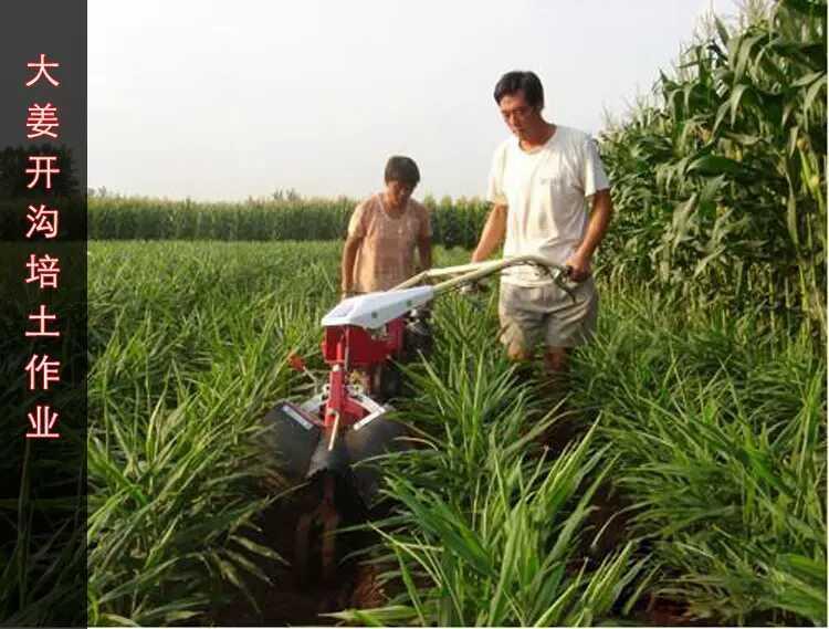 两驱微耕机|四驱微耕机|田园管理机|四驱后旋微耕机|莱州市昊威农业机械有限公司