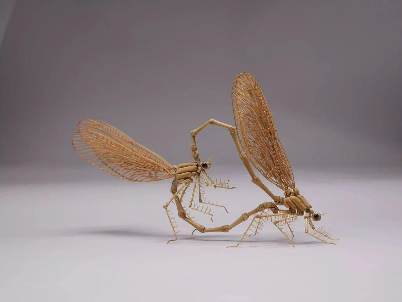 这位艺术家手作的昆虫竹细工美到令人惊叹