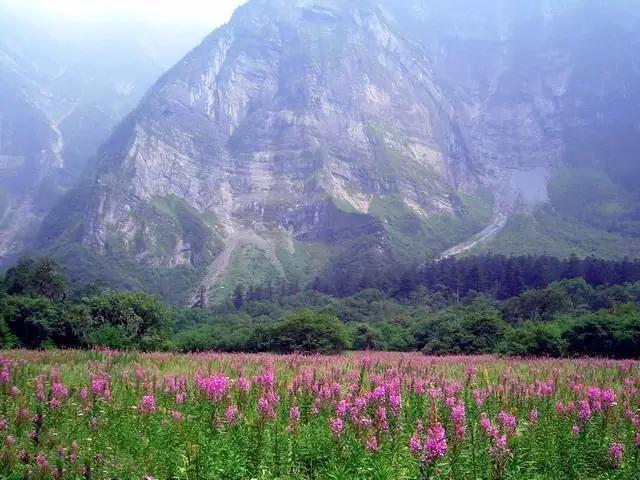旅游达人整理 成都特色美景和地道美食 悠游旅游网