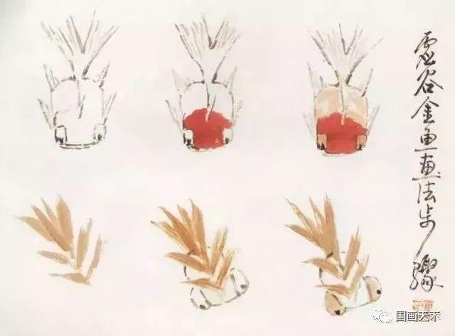 国画技法入门教程:各种金鱼画法步骤详解