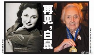白鼠 南希 韦克 悬赏500万法郎,希特勒最想除掉的女间谍图片