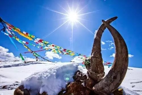 爱上西藏,往往就在这些瞬间