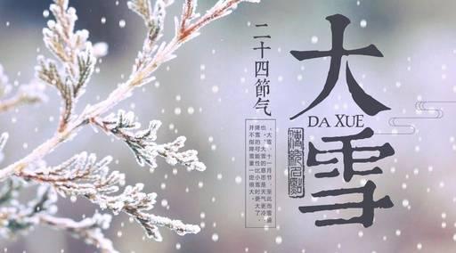仲冬雪季,万物沉寂,一种叫荔挺的兰草,也感受到阳气的萌动而抽出新芽