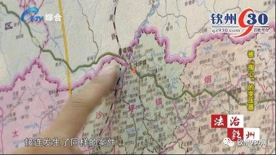 十天时间四起发案,灵山县公安局刑侦大队,接到了四个乡镇派出所的案情
