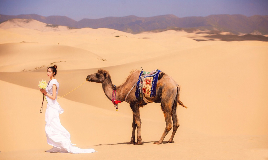 jdnewface超模万禹涵竟然用这件单品演绎沙漠时尚大片!图片