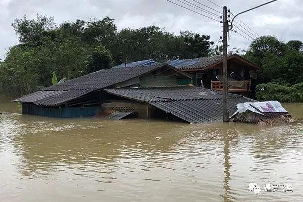 泰国洪水致15人死亡上百万人受灾,影响旅游吗?